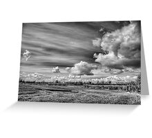 Catching Clouds (black and white) Greeting Card