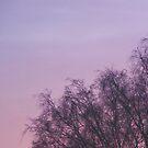 Purple Sky by ArtOfE