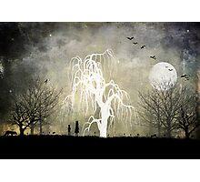 One Moonlit Night Photographic Print