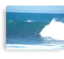 The harmony of the waves Canvas Print