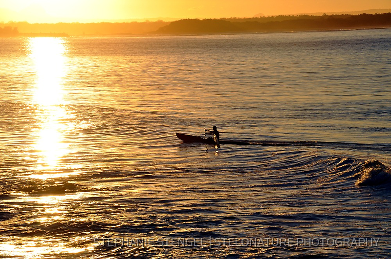 Coming Home by STEPHANIE STENGEL | STELONATURE PHOTOGRAHY