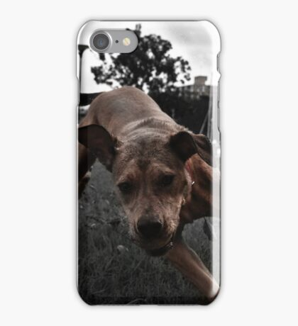 Running Dog iPhone Case/Skin