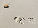 Solitary on Beach by Ian Ker