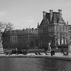 Louvre from the Jardin des Tuilieries by Potz
