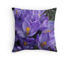 Crocus in Bloom Throw Pillow
