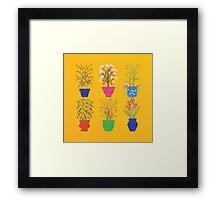 The Spice Garden  2012 Framed Print