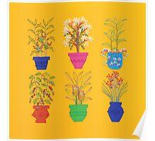 The Spice Garden  2012 Poster