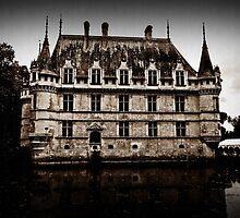 Le château enchanté. by Marie Moriscot