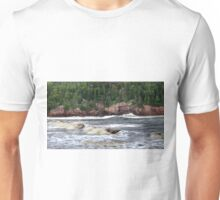 Black Brook Beach Unisex T-Shirt