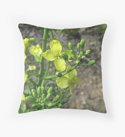 Nomadic Journey to the Soul's Oasis Throw Pillow