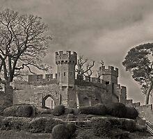 warwick castle keep by Penny Rumbelow