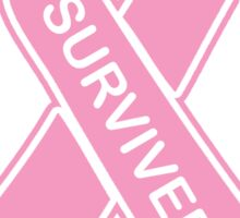 I Survived Breast Cancer -- Breast Cancer Awareness Sticker