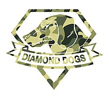 Diamond Camouflage Photographic Print