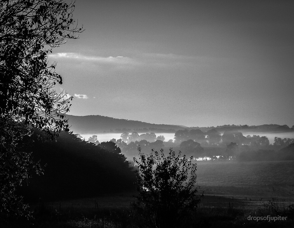 Coldstream morning by Louise Delahunty