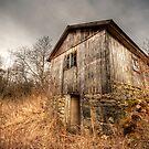 Barn in the brush by Elisabeth van Eyken