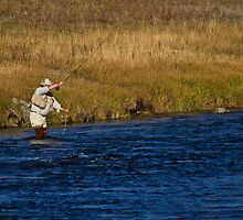 Double Hauling The Madison River by Tim Denny