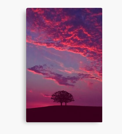 Blazing Double Tree Canvas Print
