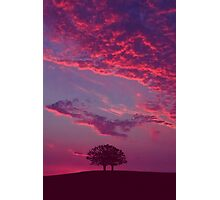 Blazing Double Tree Photographic Print