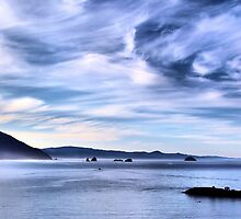 Morning at Port Orford, Oregon   by Don Siebel