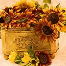 Sunflowers Galore by Sandra Foster
