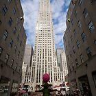 NYC 2012 Spring by JenniferW