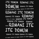ROMANI ITE DOMUM by ikado