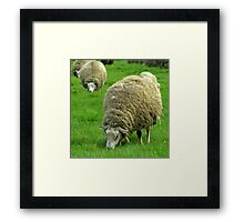 """Still wearing my Wintercoat..."" Framed Print"