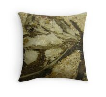 BUTTERFLY ~ 14 WINGS Throw Pillow