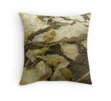 BUTTERFLY ~ 15 DELICATE Throw Pillow