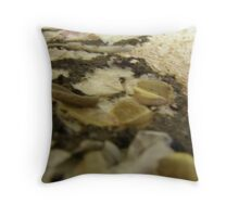BUTTERFLY ~ 16 DREAM Throw Pillow