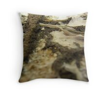 BUTTERFLY ~ 17 FREEDOM Throw Pillow