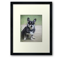 Stitch ~ Framed Print