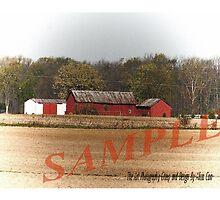 Barn by aliciacain2121