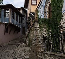 Steep and Twisting Cobblestone Street by Georgia Mizuleva