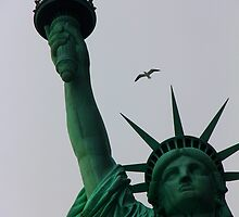 Liberty in Flight by Pippa Carvell