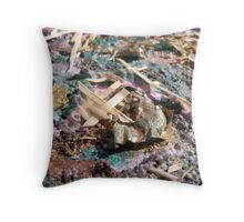 BUTTERFLY ~ 45 NO CROWN Throw Pillow