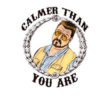 Calmer Than You Are. by GENEROUSLYFUNNY