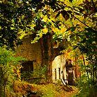Fall by Thomas Zagler