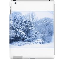 Winters scene  iPad Case/Skin