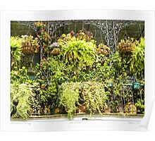 """Horticulturist Balcony"" New Orleans French Quarter Poster"