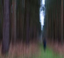 Forest Abstract 7 by Giles McGarry