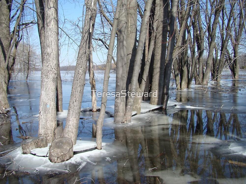 Spring thaw on Sturgeon Lake, Colon, Michigan by TeresaSteward