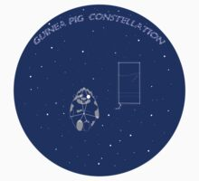 guinea pig constellation by tyler31