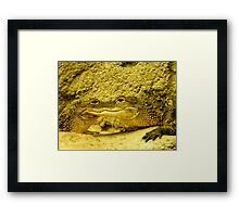 Jabba or what?{move over, George Lucas} Framed Print