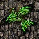Dark green dracopheonix on bark by Aurora