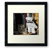 BOOKS AND BEARS Framed Print