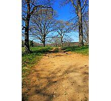 Wagon Path Photographic Print