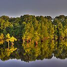 Calion Lake Panorama by Chris Ferrell