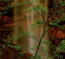 Toccoa Falls, GA by GodsEarth