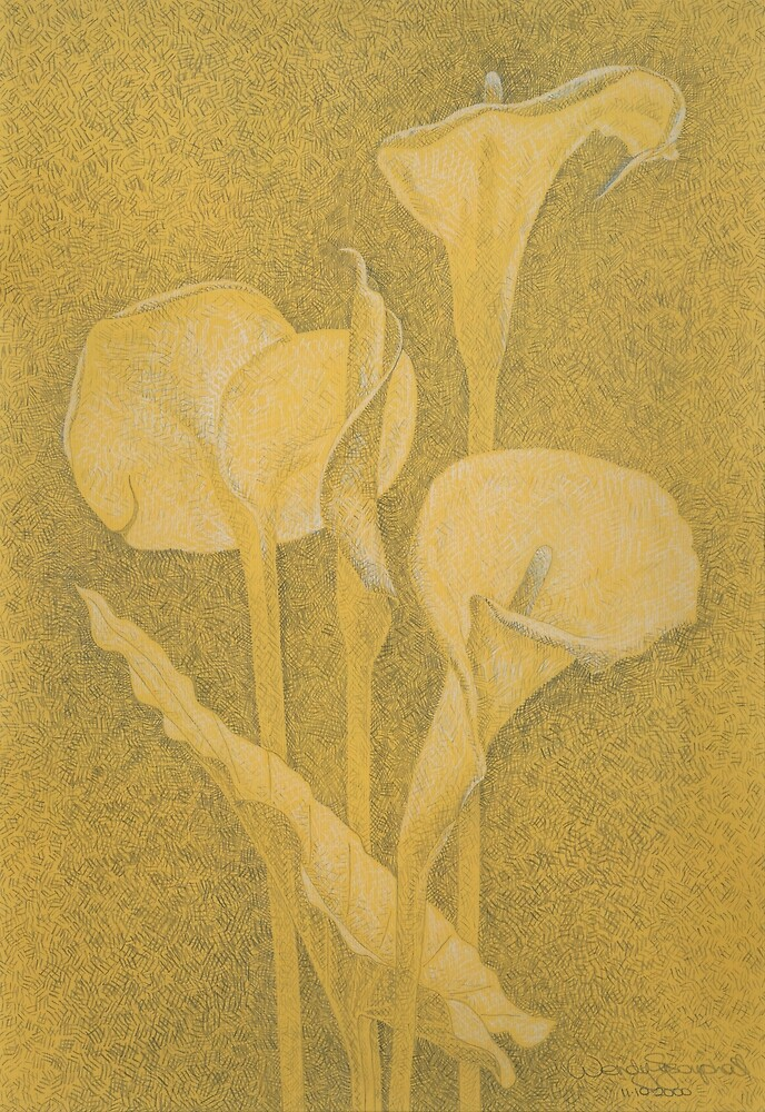 Arum Lilies  2000 by Wendy Sysouphat